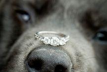 Wedding ideas / by Suzanne Deadmond