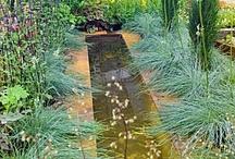 Yard, Garden & Outdoor Space  / Gardening brings me joy. / by Di