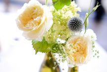 wedding / by Karen Heck