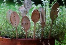 Gardening / by Trisha Crawford