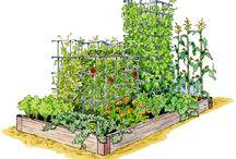 garden inspiration / by Patti Miller