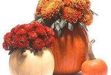 Fall decor/crafts / by Jodi Delheimer Joos