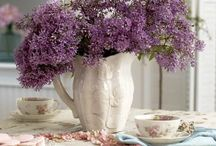 Flowers / by Adriana Petroiu Spencer