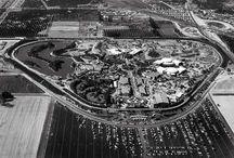 Disneyland / by Heather Sievers
