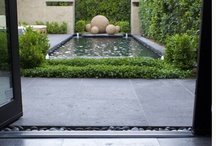 garden design / by Sonia Spotts