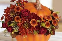 CRAFTS; Decorating for Fall / by Alice Babon