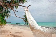 Shipwrecked winter wedding / Winter beachy theme / by Amber Woodall