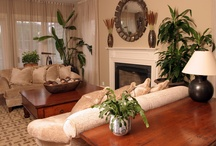 Living Room Ideas / by Jess - Frugal with a Flourish