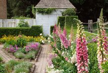 Jardins privatif / by Sylviane Mathey
