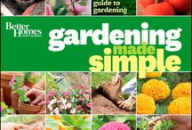 Spring has Sprung! / After surviving the snow and cold of the Chi-beria winter, it's time to get into the swing of spring! Check out some gardening and organization books at your Aurora Public Library / by Aurora Public Library, Illinois