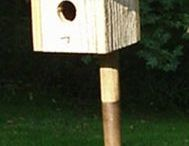 BEAUTIFUL BIRDHOUSES / by Jennifer Choate
