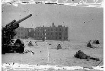 History Stalingrad / by Mr D