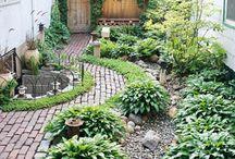 Gardening / by Su Enich