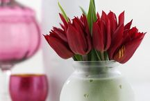 Floral Gifts - DIY of course! / by Mary Lou