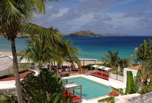 St. Barths - Caribbean / St. Barths is an arid, volcanic rock of just eight square miles is home to an eclectic mix of iguanas, night-blooming cactus, and fabulous beaches as well as luxury yachts, designer boutiques, and celebrities.  / by RumShopRyan - Caribbean Blog