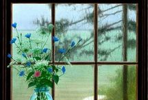 Windows to the world / by Ginny Murphy