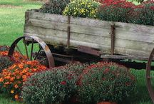 Country Gardens / Beautiful country gardens / by Vicki Beckman