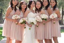 Bridesmaids / by Mandi Jordan