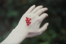 Inspiration / by Inga Glukhova