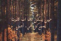 aminah / by Lamia El-Yassih