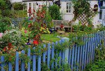 Garden / by Liz Broglin