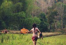 Laos / by Kylie Crawford