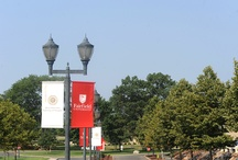 Fairfield U News / by Fairfield University