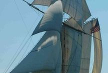 Segelschiffe Most Beautiful Sails Ship / by Dietmar Beseke
