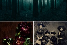holidays, seasons, & celebrations / by Kelly Cline