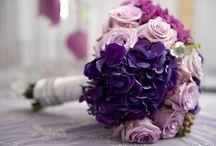 Wedding / by Shelly Pietenpol
