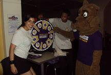 Adventures of Lil' D / by UAlbany Involvement Leadership