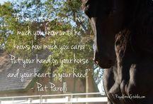 Horses ❤️ / by Sondra W