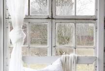 White / by Jen Carver Photography