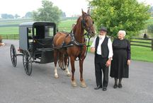 """Amish (or Mennonite) - We call them """"different"""", but to them, we are the """"different"""" ones. / by diane"""