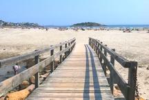 Beach & Sea / All things beach, sand, ocean, Good Harbor, SUP, snorkeling, tropical fish, shells, beach chairs, vacations, etc. / by Kimmarie Degrange