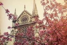 ღ~ Dream Vacations ~ღ / I have never been out of the United States. One day, I hope I get the opportunity to do so. Paris, France will be my first stop :)  / by ♡ Tammy ♡