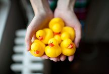 Rubber Ducks / by Hotchpotch Ehh