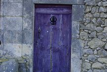 Purple / A hint of purple  / by Jennifer R. Bernard