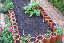 Urban Garden Ideas / Neat DIY ideas for gardening in a city setting! / by Kari Linn