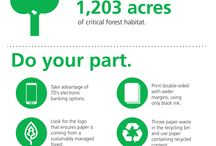 TD Bank Infographics / by TD Bank - America's Most Convenient Bank®