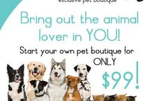 Cat Lovers Meow / by For Tails Only~Changing Lives one Paw at a time.