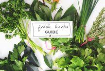 Herb Garden / by Heather M