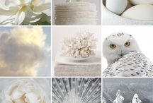 Everything's All White / by Mary Roberts
