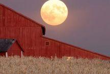 Photography > Bridges/Barns / by Sherry Hopkins