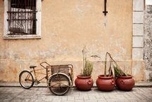 Mexico / by Entouriste