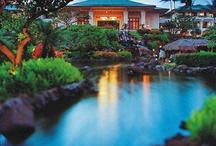 Hyatt Honeymoon Destinations / by Park Hyatt Aviara Resort, Golf Club and Spa