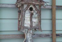 Bird houses and birds / by Jayne Ferguson