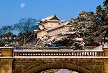 Japan / by Big Five
