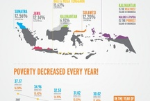 Infographics and Data Visualization / by Cristina Batista