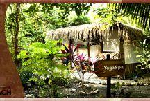 """Spa Natural in Santa Teresa Beach  / Enjoy the Bliss of Hotel Tropico Latino's """"Yoga & Spa Natural""""  / by Hotel Tropico Latino"""
